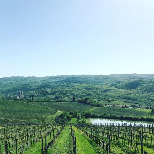 Italy Snapshot 28